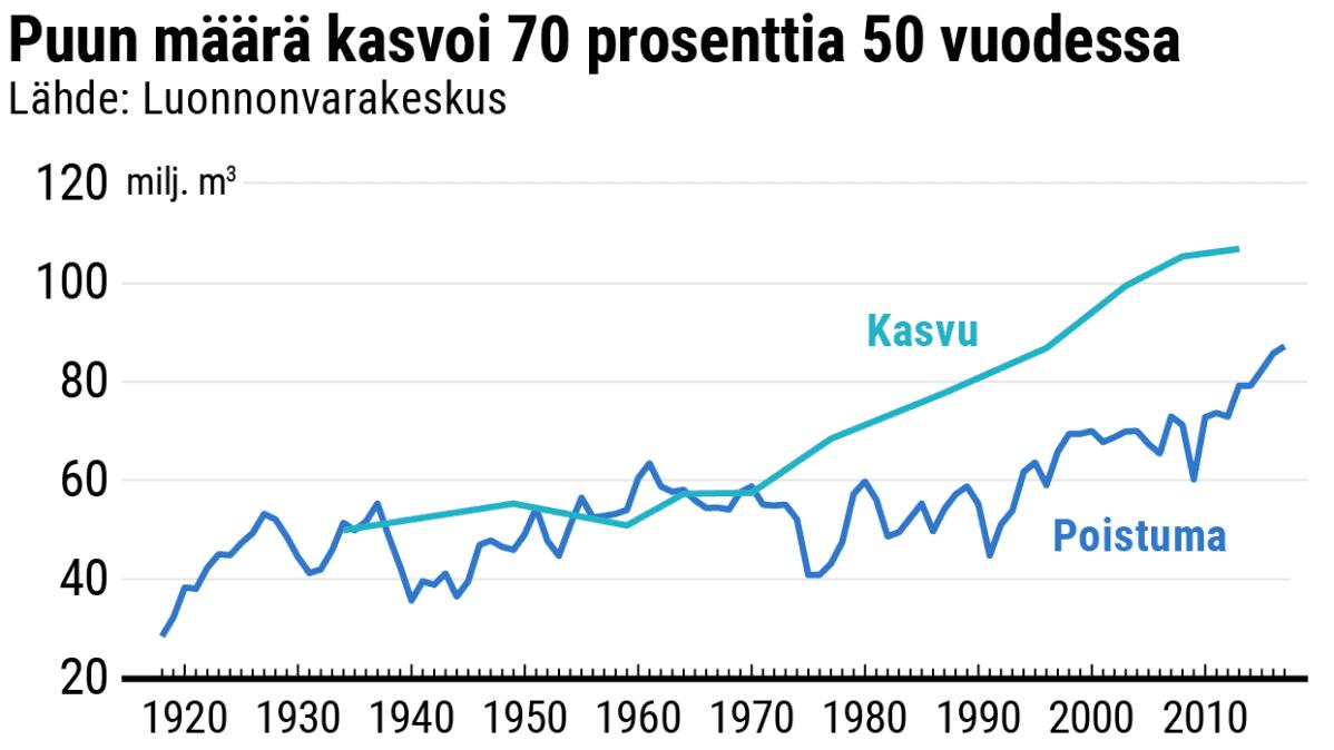Puun määrä kasvoi 70 prosenttia 50 vuodessa
