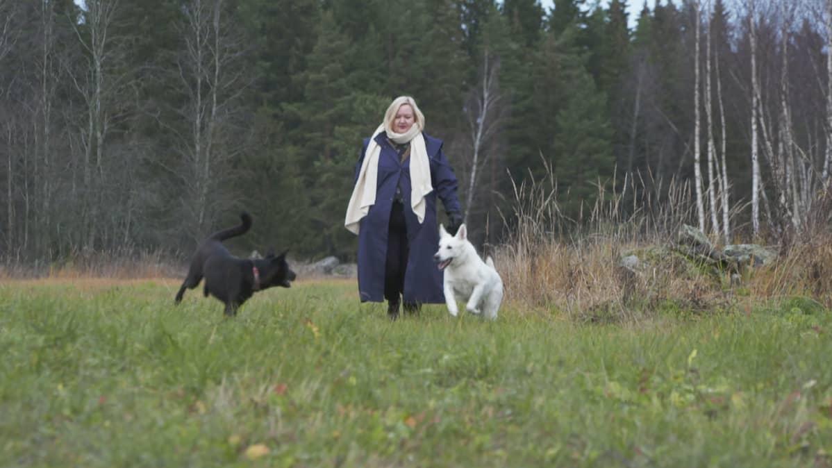 Pellolla nainen ja kaksi telmivää koiraa.