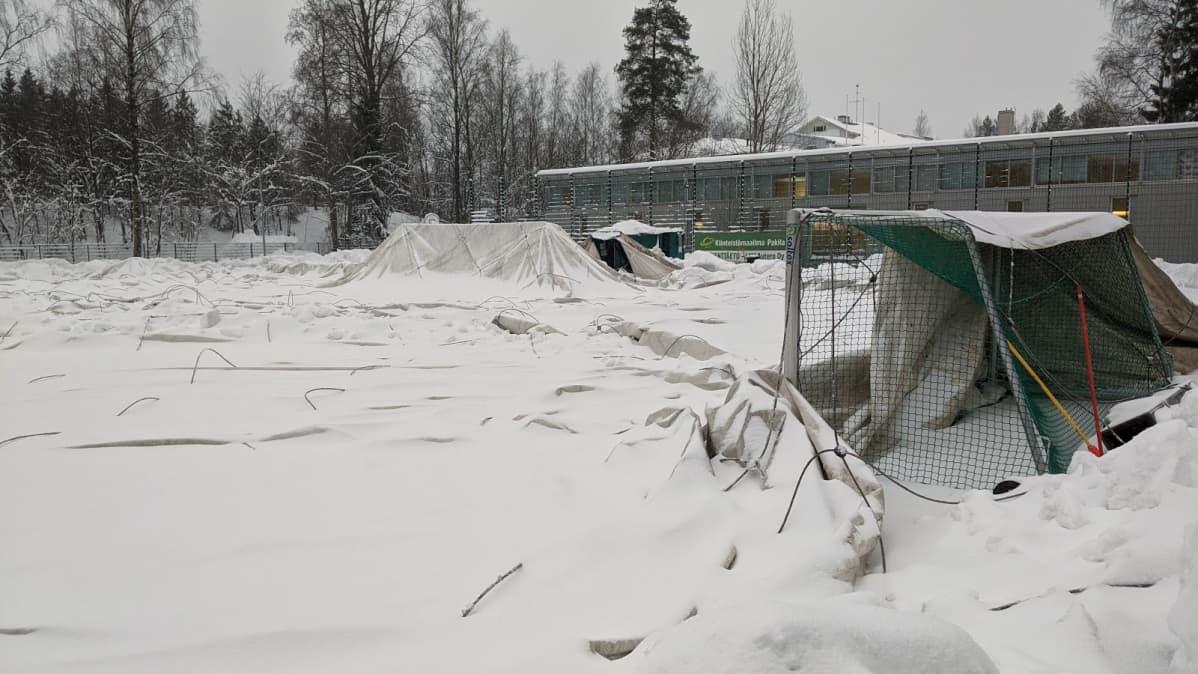 Romahtanut kuplahalli Helsingin Pakilassa.