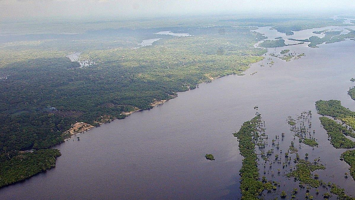 Ilmakuva Amazonin sademetsän alueesta Brasiliassa.