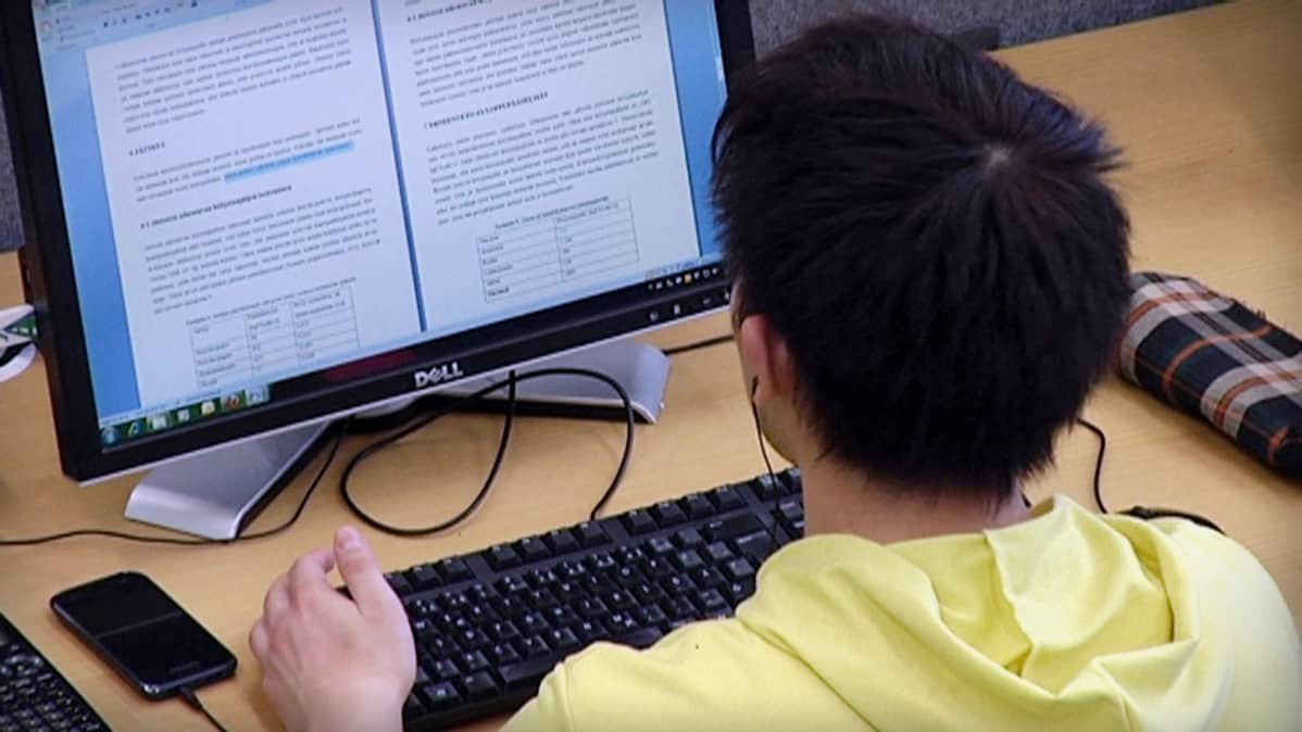 Tarjoa työ- tai harjoittelupaikkaa opiskelijoille
