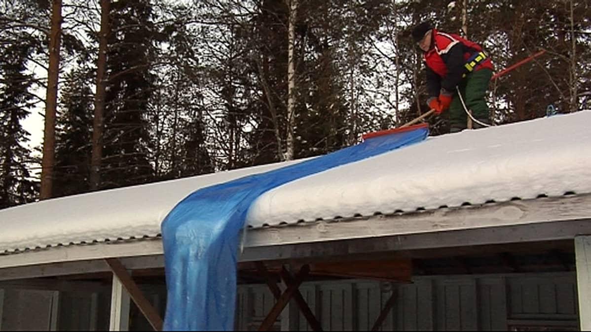 Tapio Viitajylhä  ja LumiTapio.