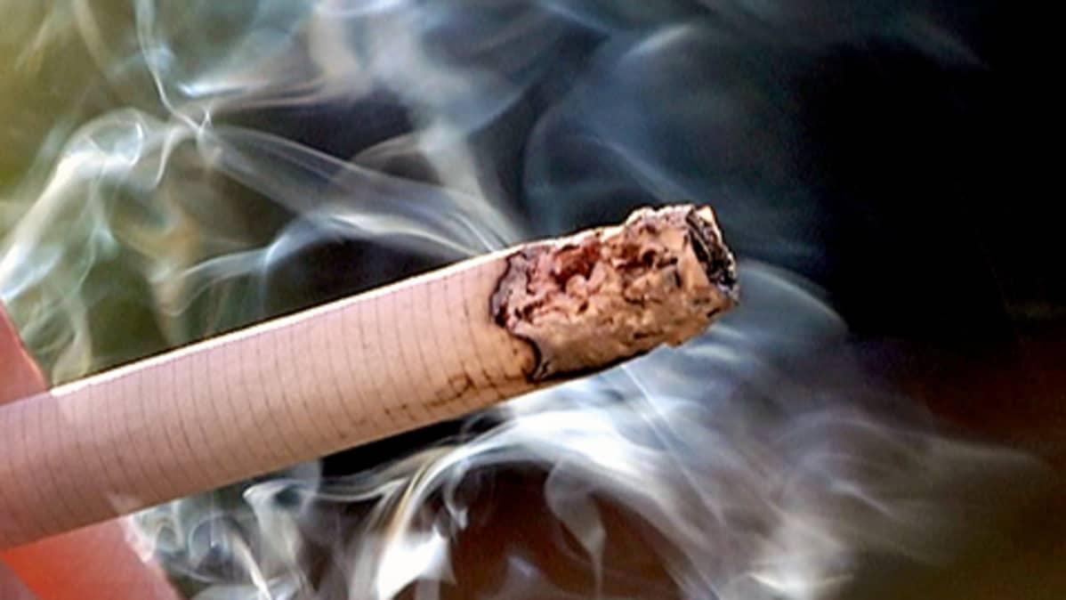 Tupakkka savuaa.