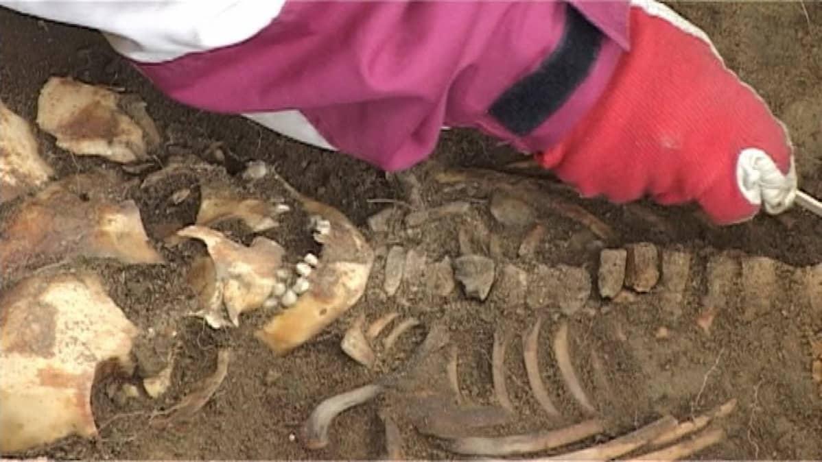 Rengon kirkon vieressä tehdyissä vuoden 2008 kaivauksissa löytyi mm. tämä lapsen luuranko.