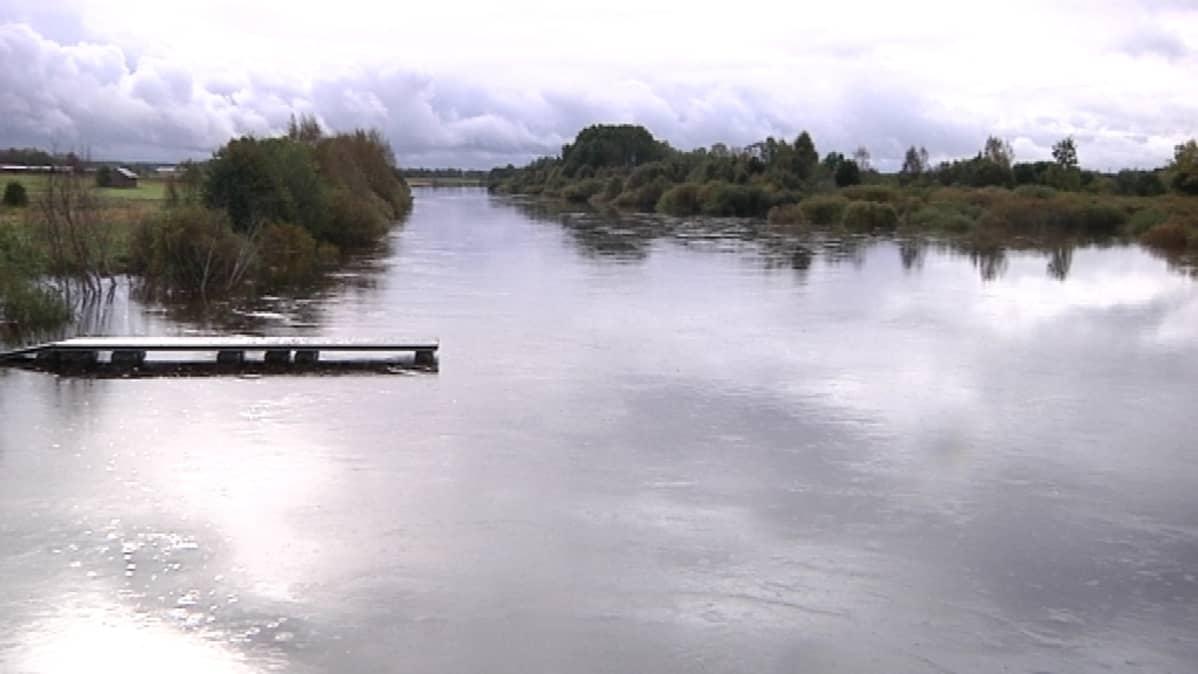 Vesi on noussut yli tulvarajan Lapuanjoessa.