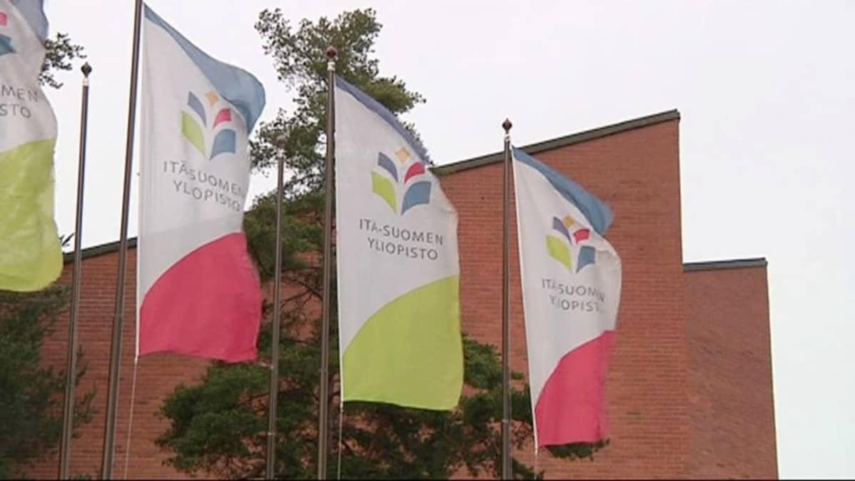 Itä-Suomen yliopiston liput liehuvat.