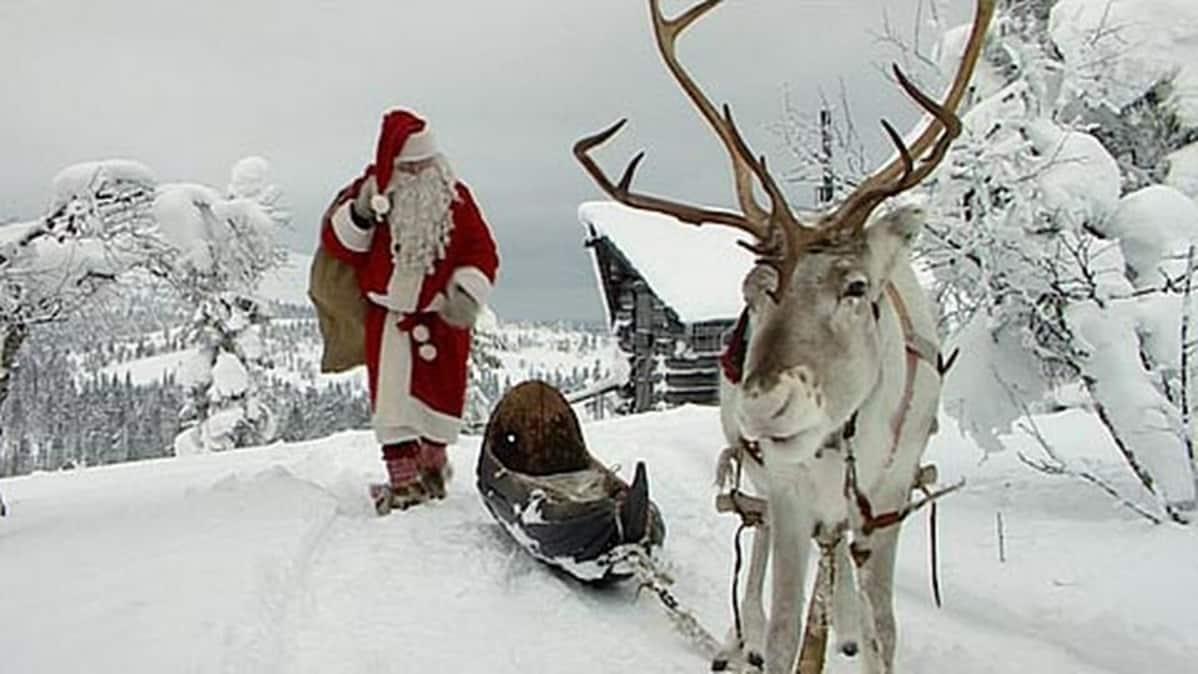 Joulupukki ja poro