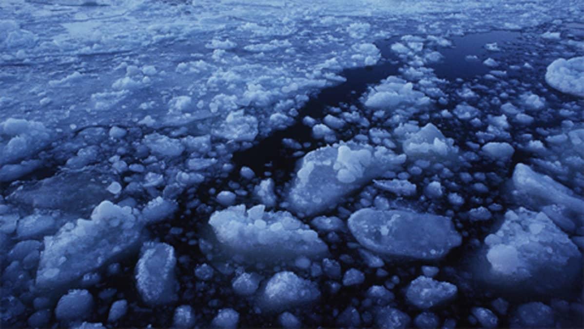 Heikkoa jäätä.
