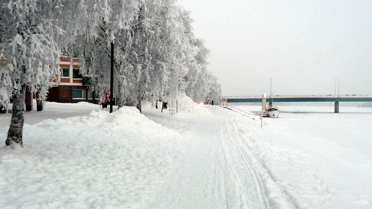 Kemijokiranta
