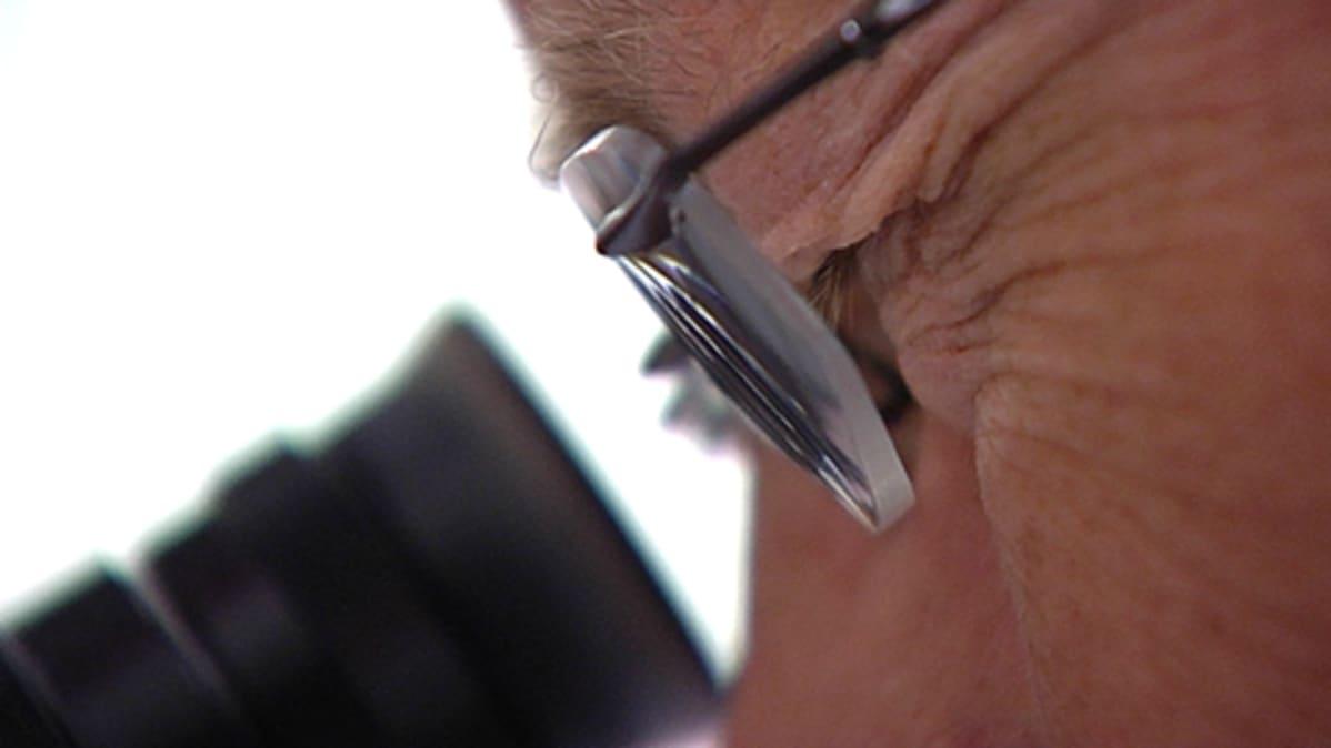 Mies katsoo luuppiin silmälasit silmillään.