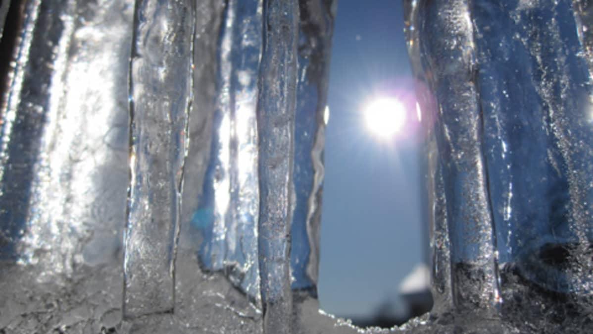 Maaliskuun aurinko sulattaa jääpuikkoja