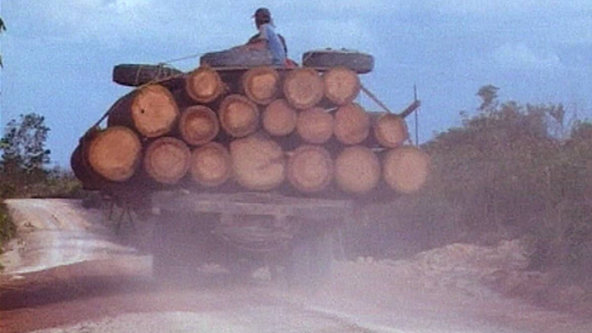 Tukkikuormaa ajetaan tiellä Borneossa.