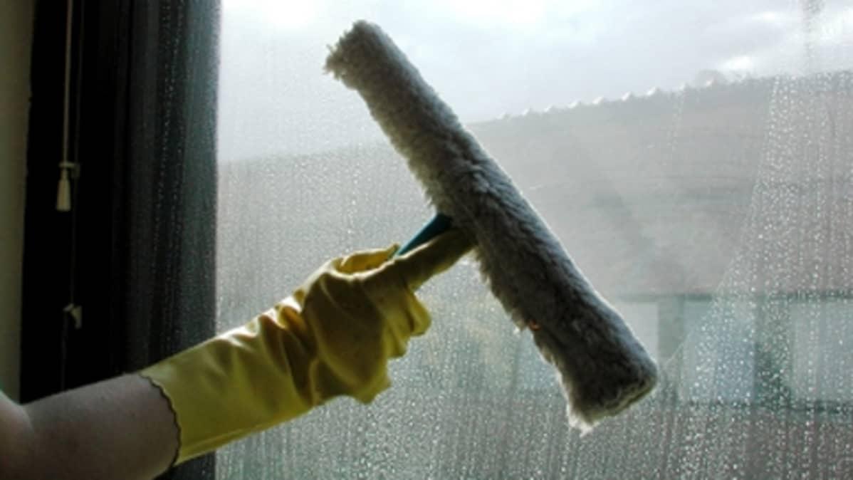 Ikkunanpesua