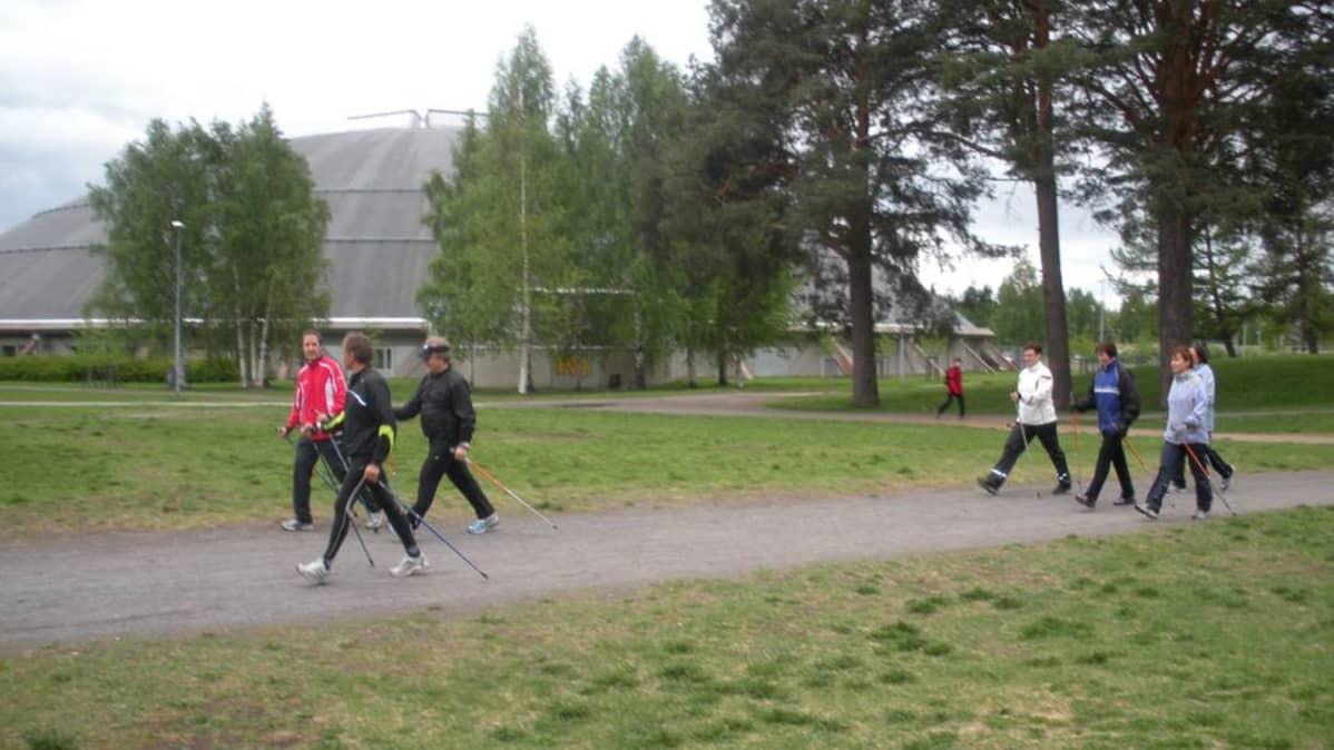 Voimakaksikot kävelivät Raksilan maastossa.