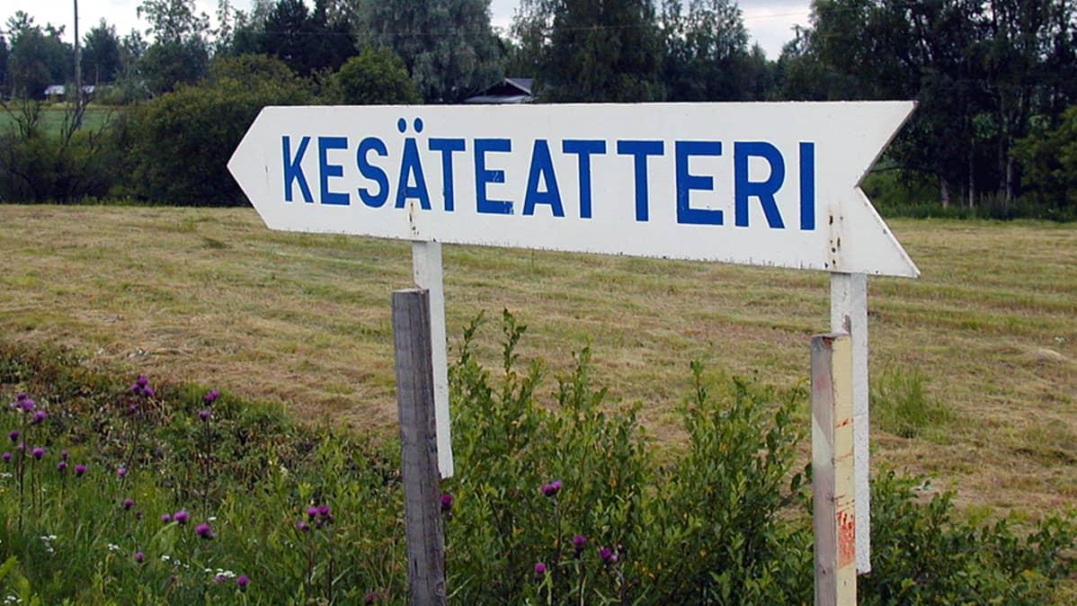 Yleinen näky Suomen kesässä.