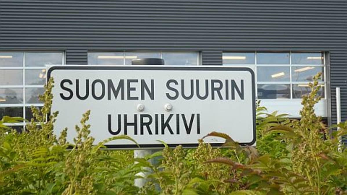 Suomen suurin kuppikivi on piilossa pensaiden takana