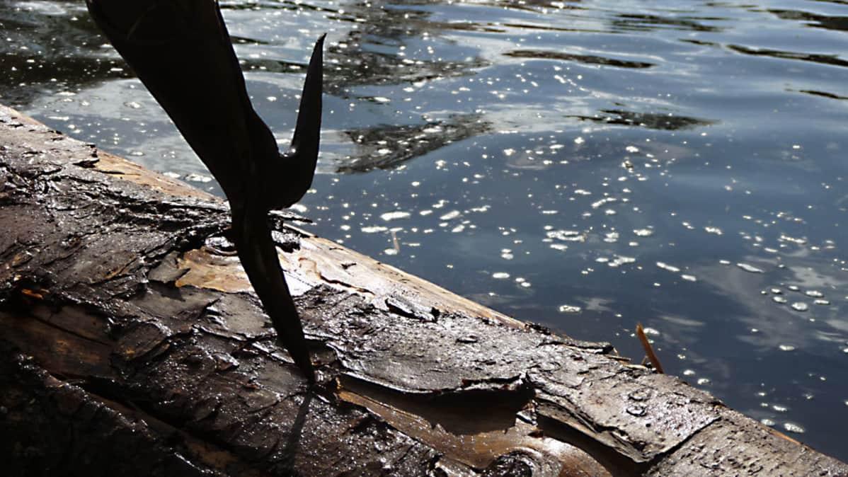Wood River Kia >> Tukkijatkat Toivat Moternin Maaseudulle Yle Uutiset Yle Fi