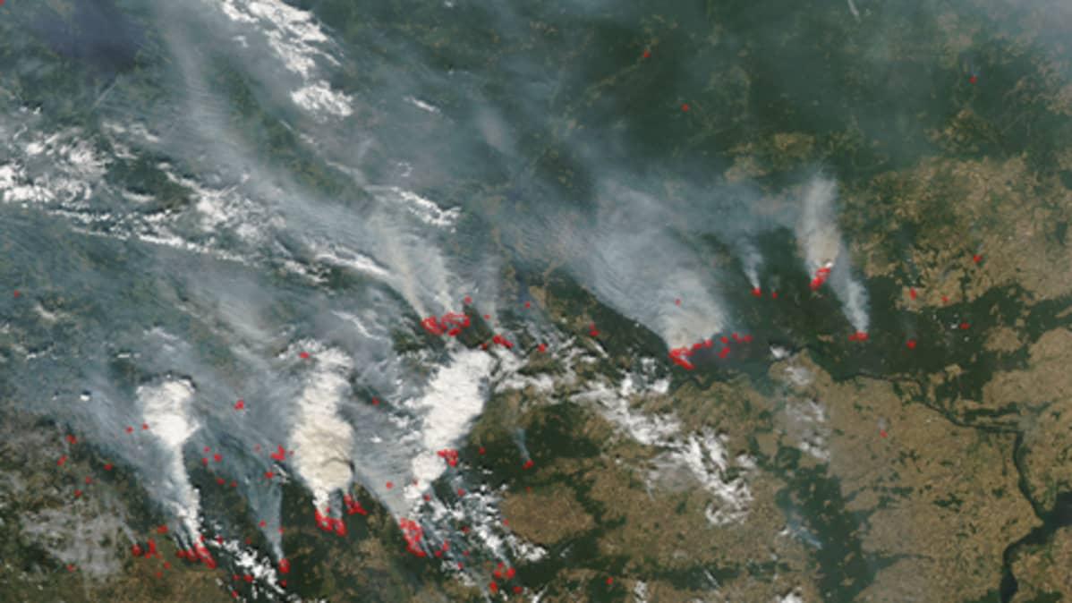 Metsäpaloja Nizhny Novgorodin lähellä 27 heinäkuuta, sateliittikuva.