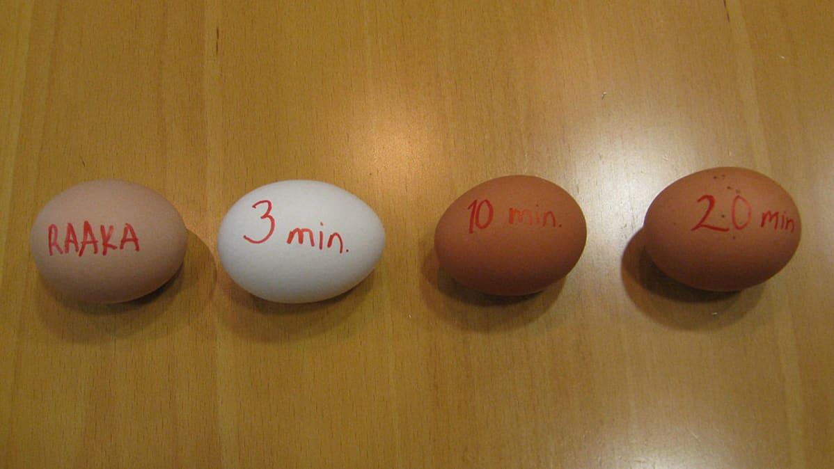 Kuinka suuri pitäisi minun munaa