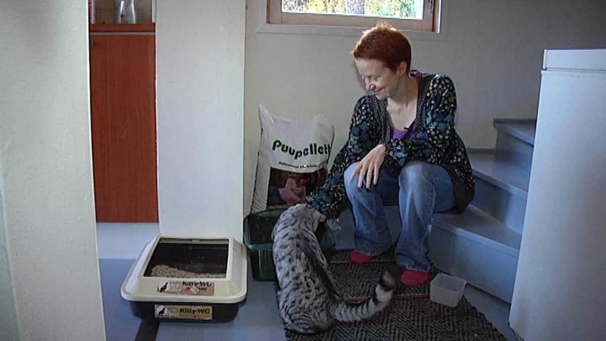Kissanhiekkaa kuluu kahden kissan taloudessa paljon. Anu Syrjänen on yrittänyt useasti totuttaa kissojaan puupelletteihin.