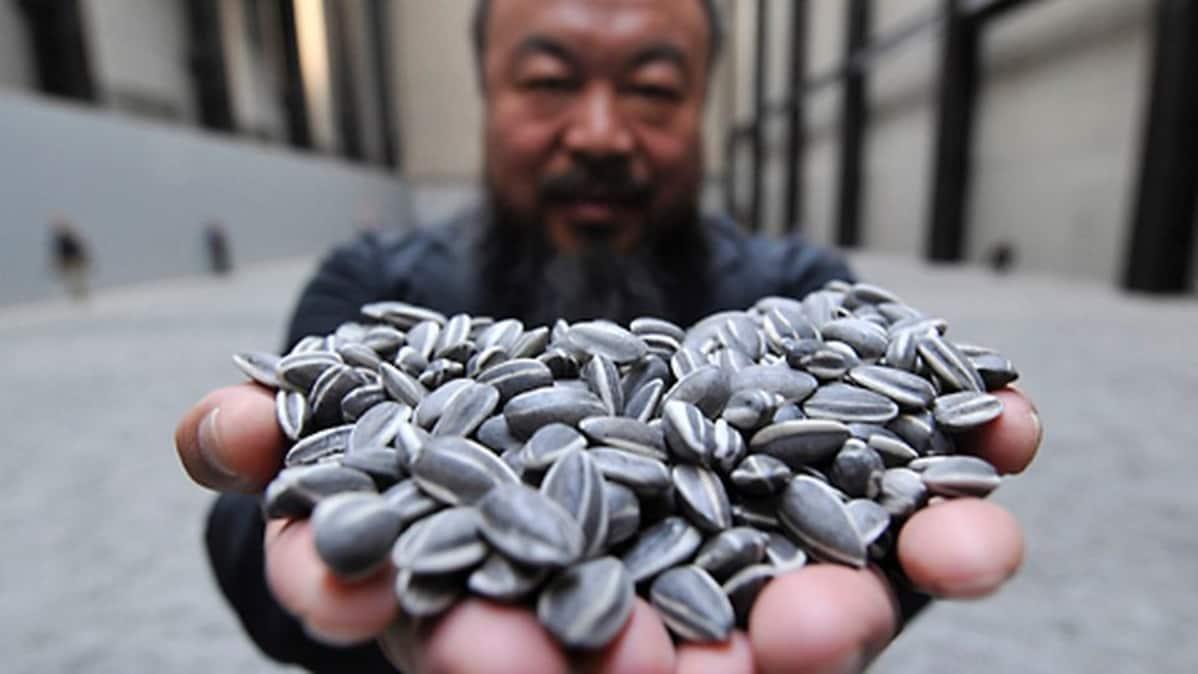 Kiinalaistaiteilija Ai Weiwei pitää käsissään auringonkukansiemeniä.