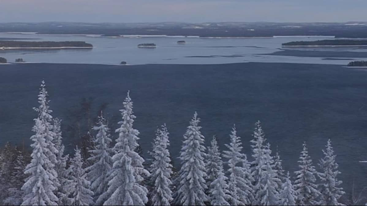 Talvinen maisema Ukko-Kolilta Pieliselle.
