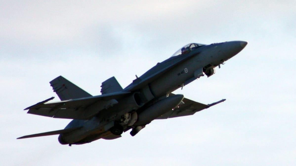 Hornet-hävittäjiä nähdään paraatin ylilennossa .
