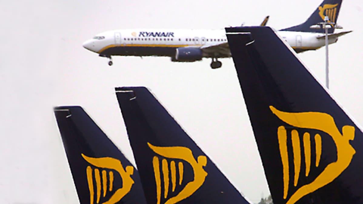 Ryanairin koneita Dublinin lentoasemalla.