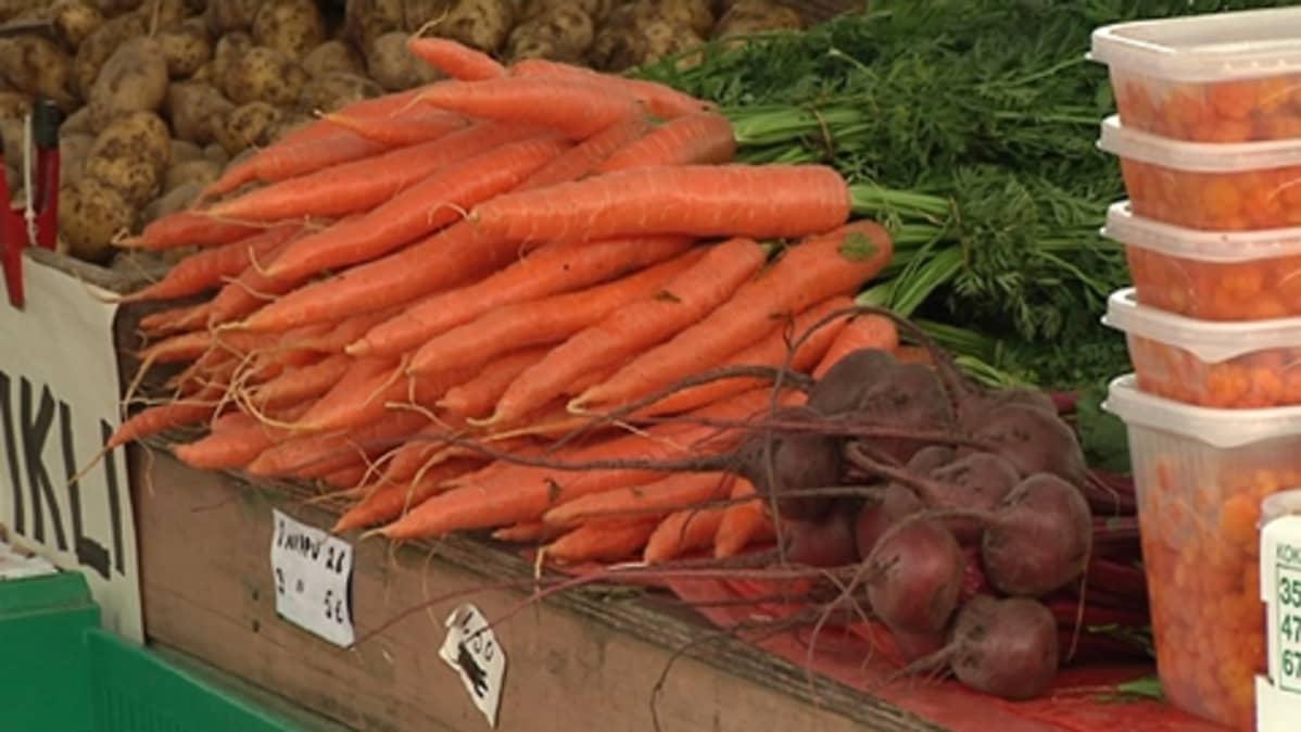 Porkkanoita ja punajuuria