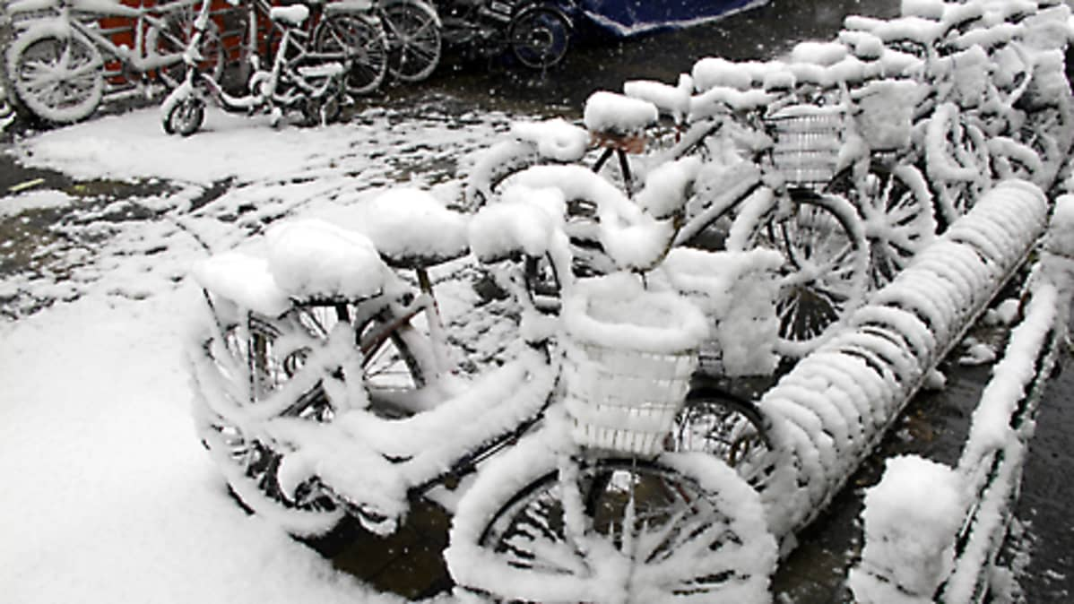 Rivi lumen peittämiä polkupyöriä Pekingissä