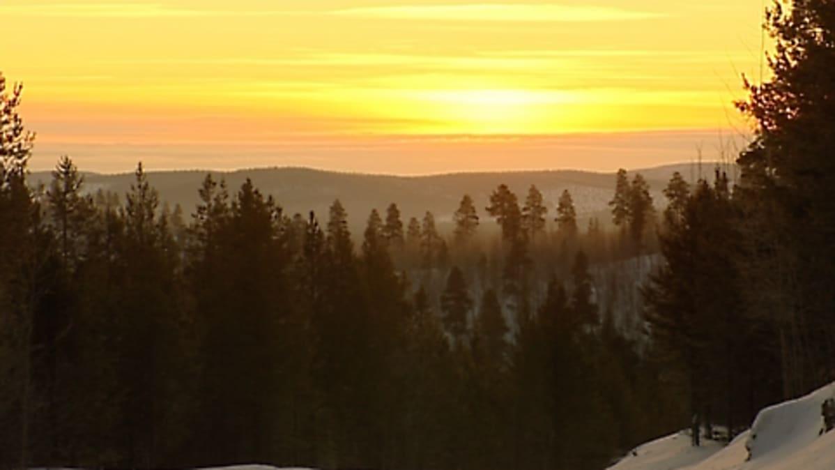 Viime talvena aurinko näyttäytyi kaamoksen jälkeen Inarissa 14. tammikuuta 2009