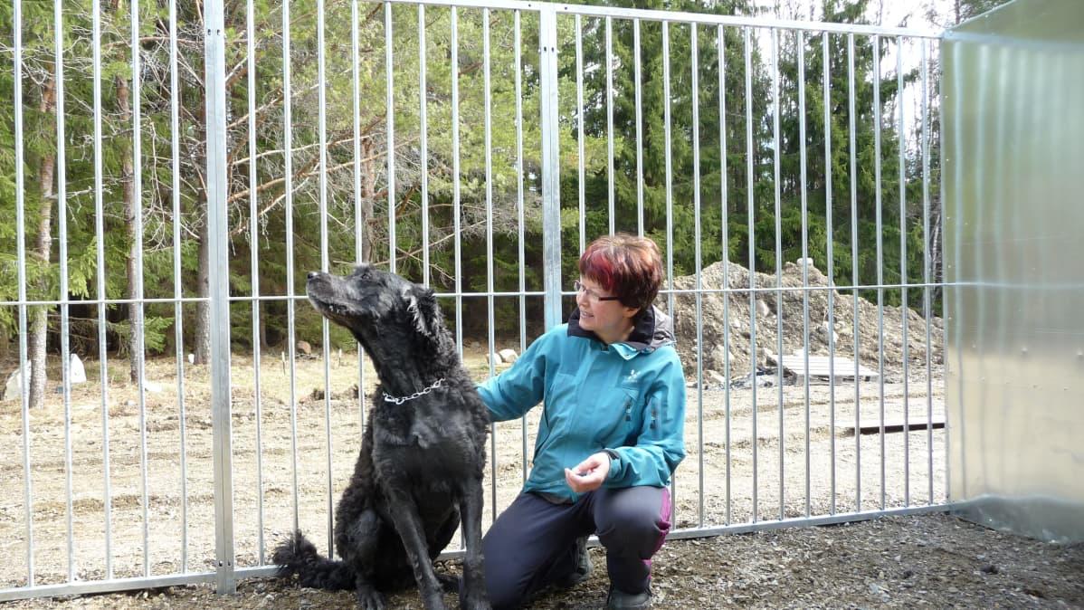 Nainen rapsuttaa koiraa koira-aitauksessa.
