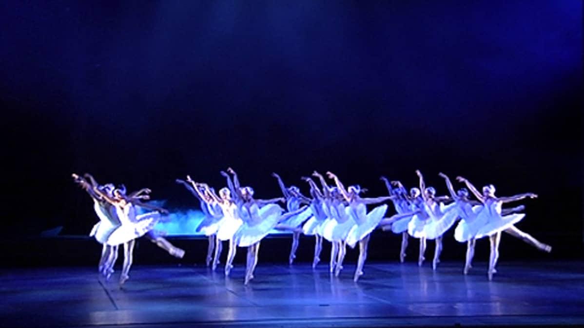 Kansallisbaletin tanssijoita esittämässä Joutsenlampea
