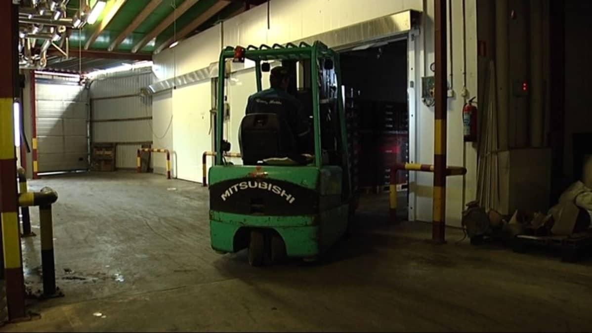 Vihreä trukki kuljettaa lavallista mustikoita Maria Bothnia Berries -yhtiön tuotantotiloissa.