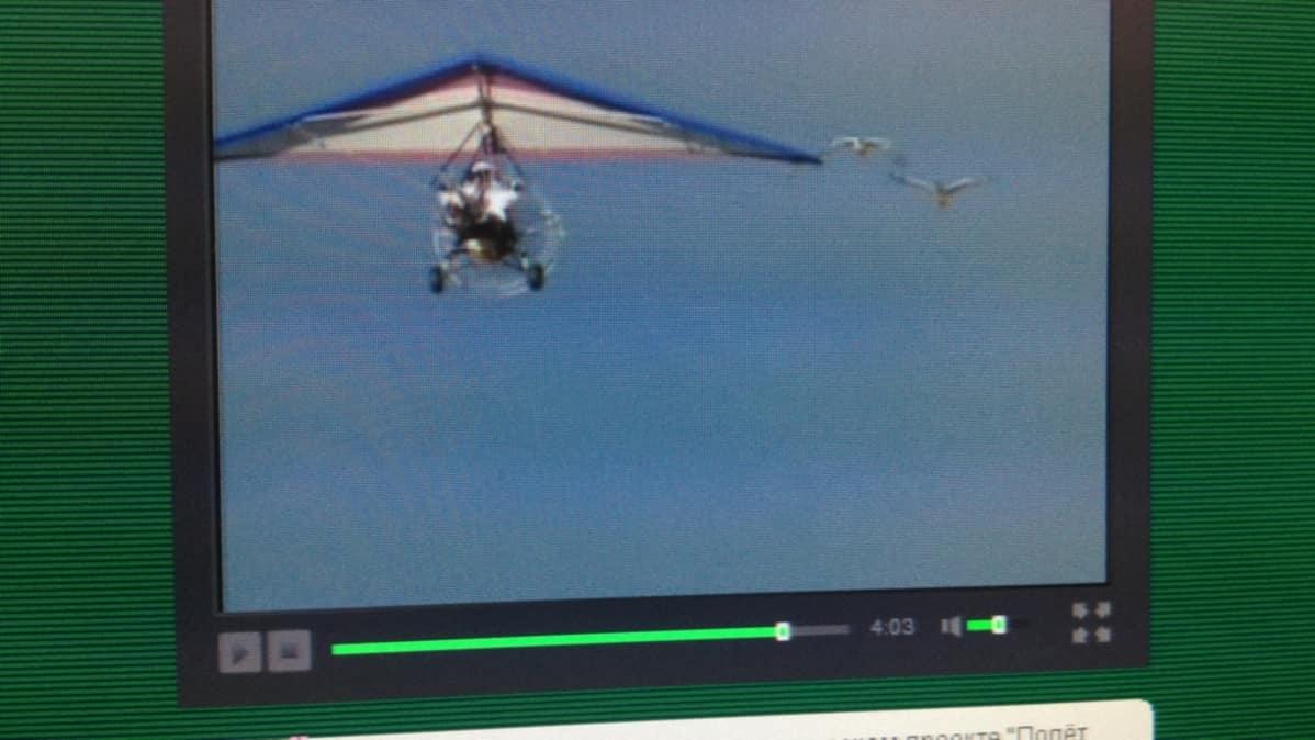 Näin Venäjän presidentti Vladimir Putin lentää kurkien kanssa. Kuva otettu Russia Today -verkkolehden sivuilta.
