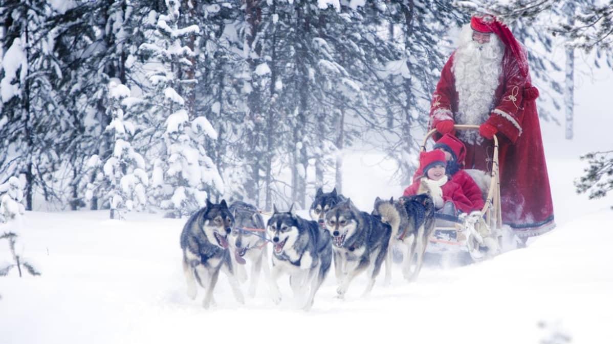 Joulupukki, tontut ja rekikoirat