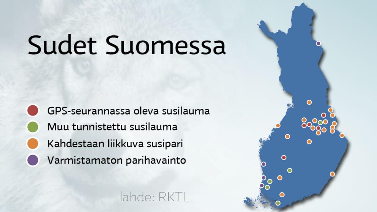 Susia On Suomessa Entista Vahemman Yle Uutiset Yle Fi