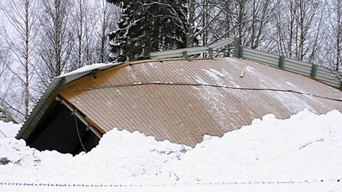 1700 neliön maneesihallin katto romahti kokonaan.