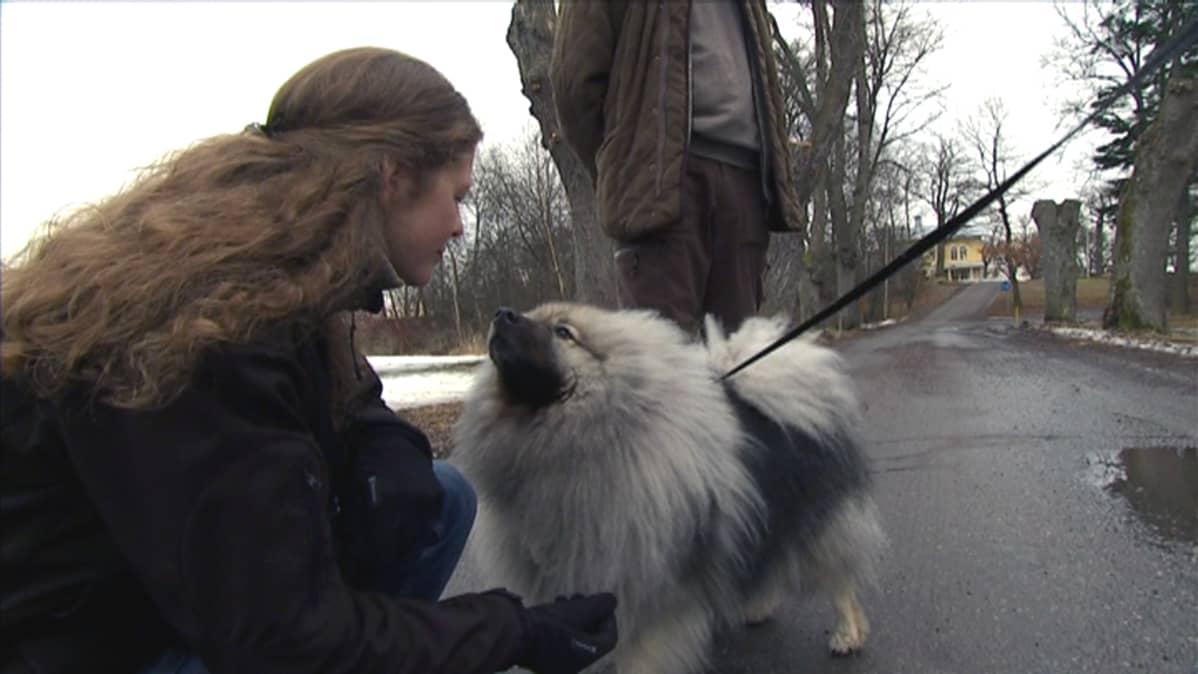 Luonnonsuojelutyöntekijä Emma Kosonen silittää koiraa.