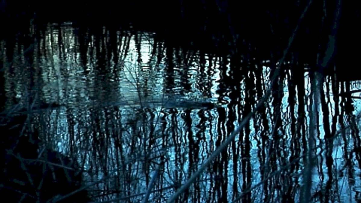 Euroopanmajava ui vedessä iltahämärässä.