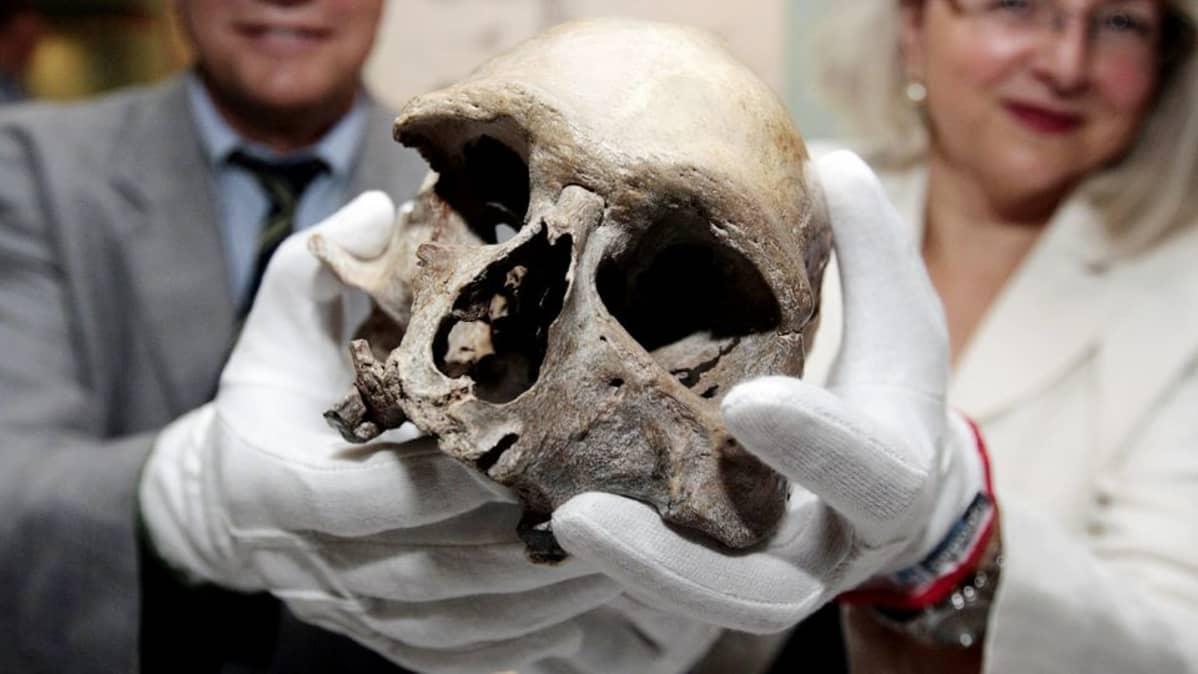 Saksalaiset tutkijat esittelevät kivikaudella eläneen miehen pääkalloa Bonnissa heinäkuussa 2009.