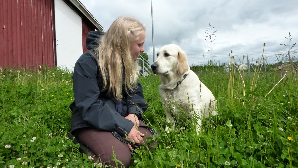 Sinikka Moilanen ja Wilma koira nurmikolla