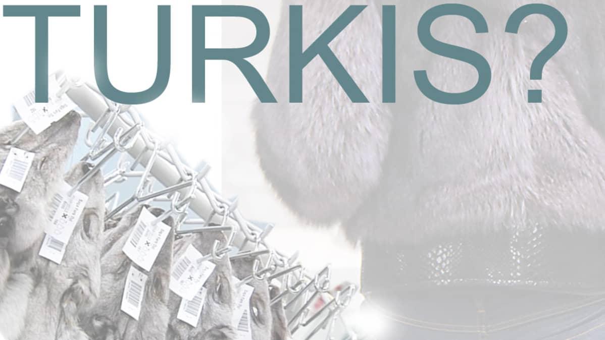 Turkis, turkki, muoti, tuotantoeläin, turkistarhaus, turkismuoti,