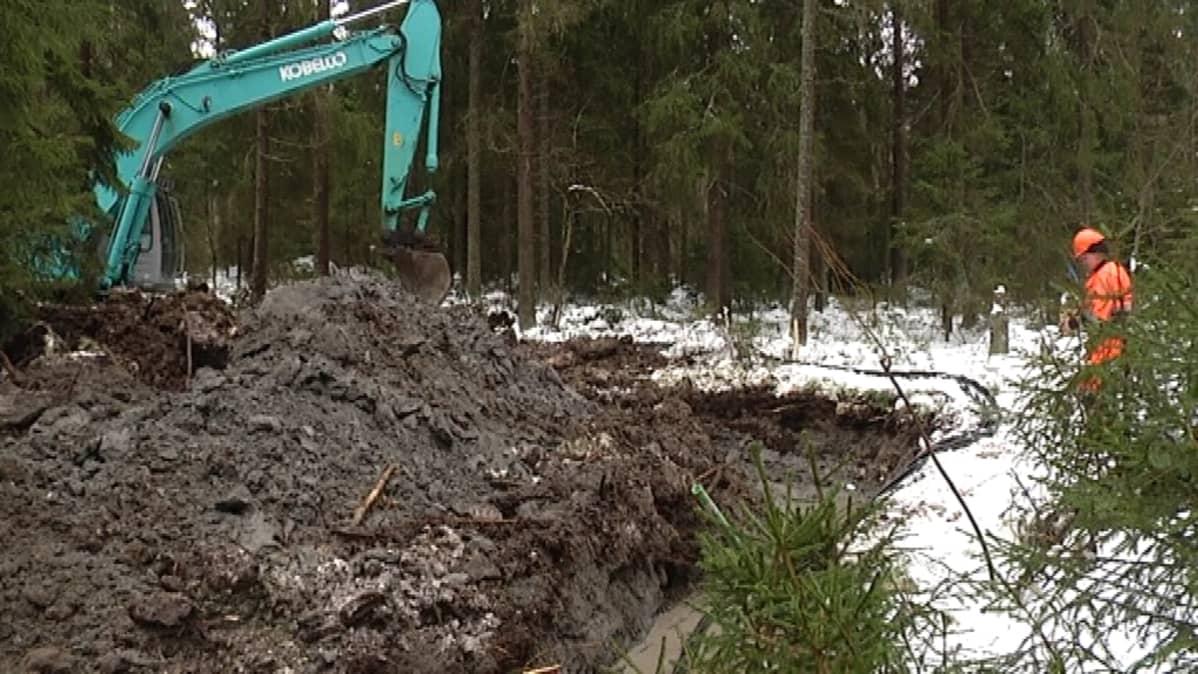 Maakaapelityömaa Vaasan Gerbyn metsässä.