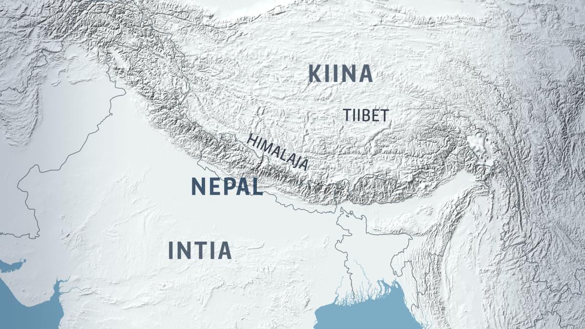 Kaakkois Kiinan Ja Himalajan Metsista Loytyi Aivan Uusi Lintuheimo