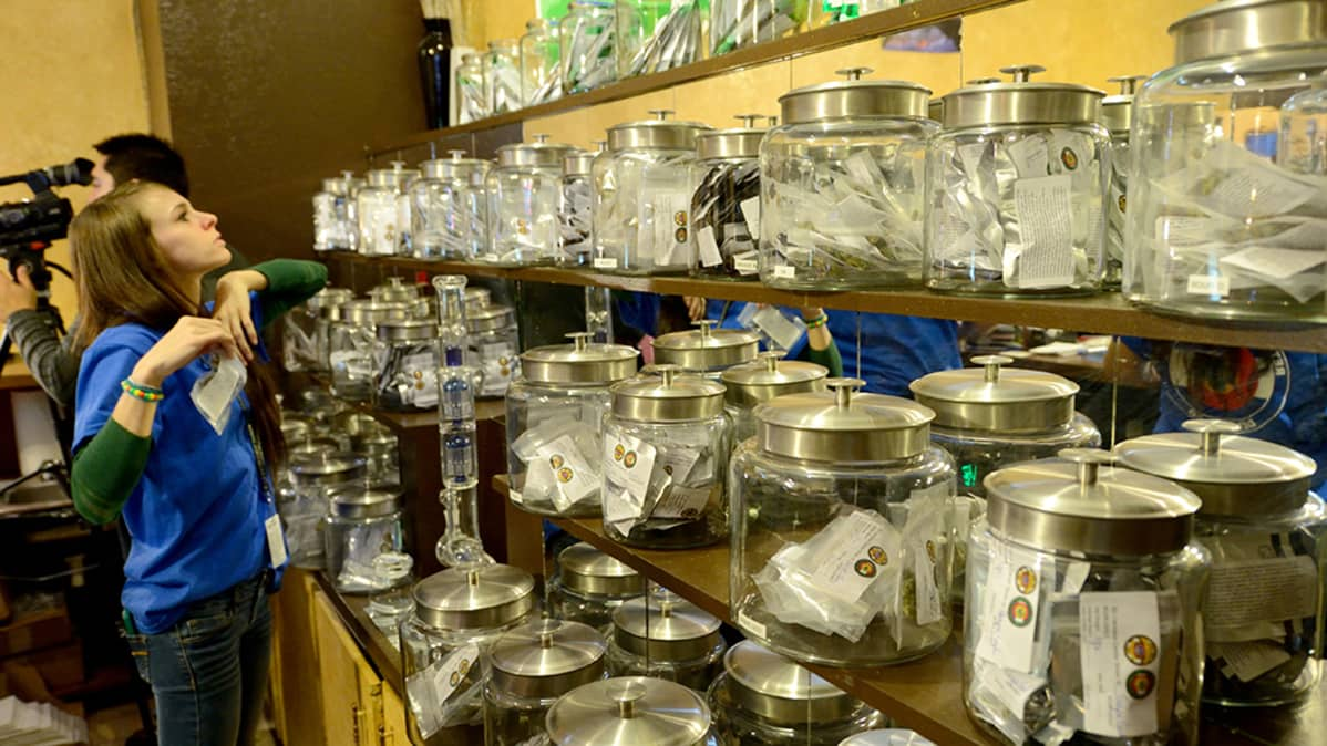 Laillinene marihuanan myynti Coloradossa.
