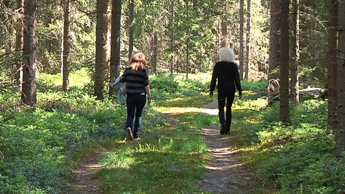 Retkeilijät metsässä