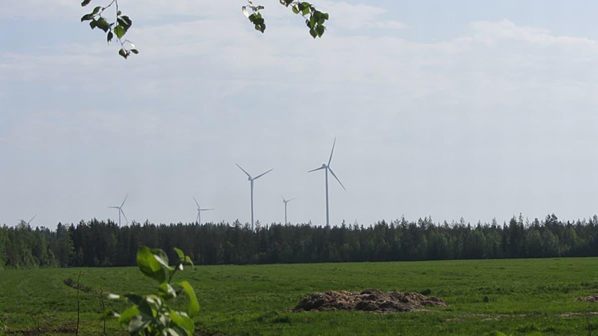 Tuulimyllyjä Tervolassa