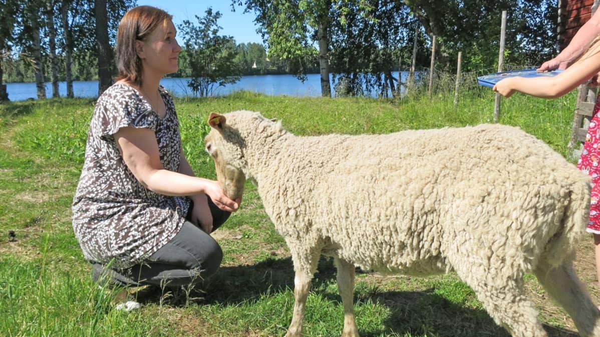 Rovakaaren terveysvalvonnan johtaja Sini-Sisko Kilpeläinen syöttää lammasta