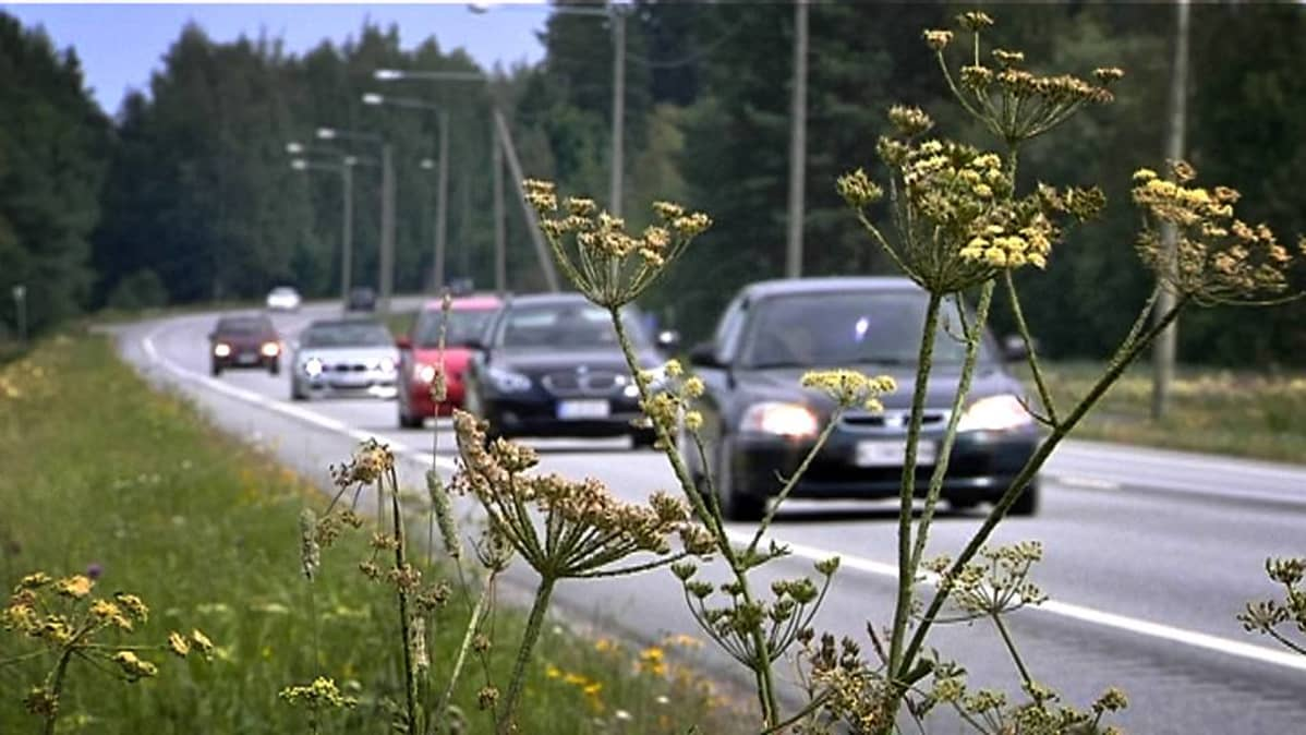 Autoja maantiellä.